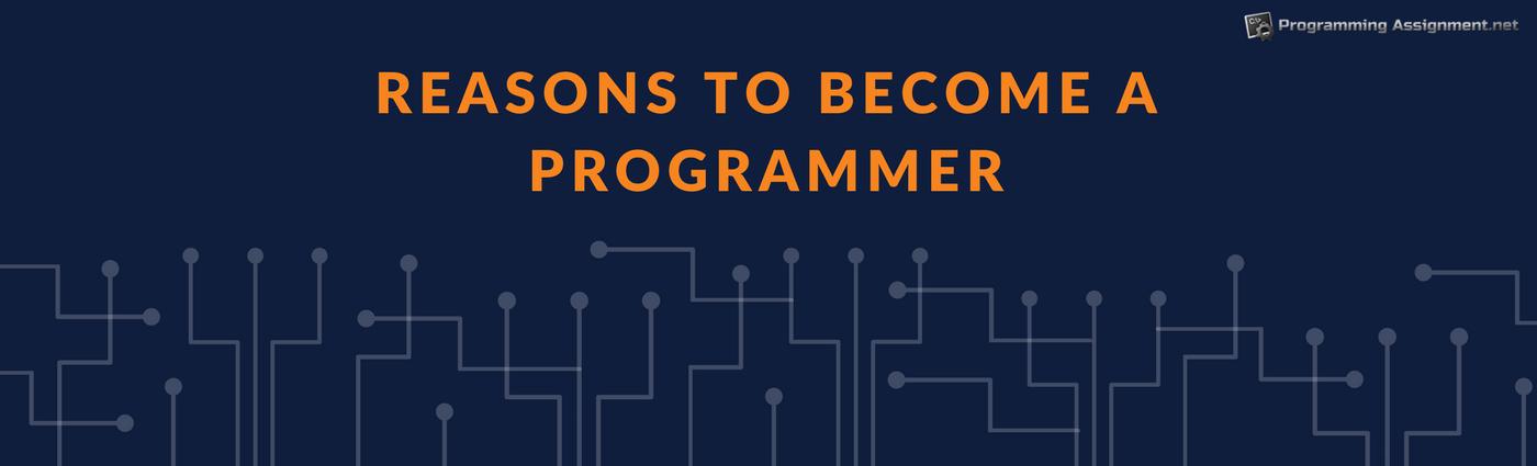 being a programmer banner