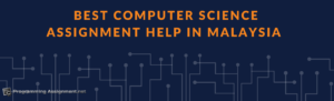 best computer science assignment help in  professional computing homework in the list of computer science