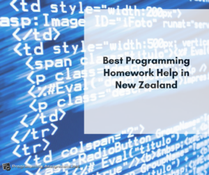 best programming help New Zealand