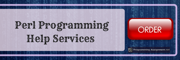 perl programming help services
