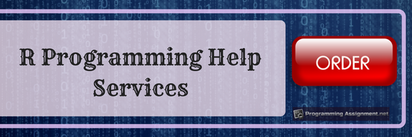 r programming help services